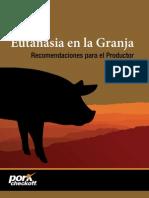 eutanasia en cerdo