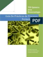 Guía de Prácticas de Procesos Fermentativos