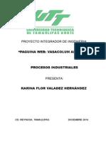 Proyecto Integrador de Ingenieria