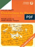 Cuadernos de Paris