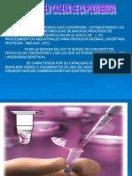 PCR MNR.ppt