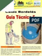 5 Guia en produccion Caldo Bordeles-1.pdf