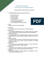 Guia Reporte de Prácticas PMF