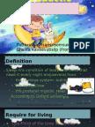 1001 sleeppresentation