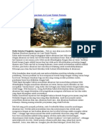Panduan Membuat Aquarium Air Laut Untuk Pemula