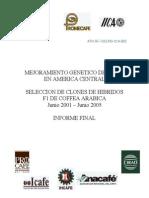 mejoramiento genetico del café en centroamerica