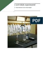 Relatório actividade experimental