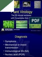 Plant Virology
