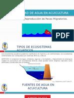 Calidad de Agua en Acuicultura