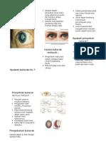 KATARAK leaflet.doc