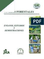Ensayo de Viveros Forestales