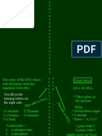 dna foldable power point