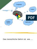 2S_menschliche_infoverarb