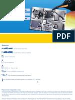 cantidades_de_refrigerantes_automoviles_y_vi.pdf