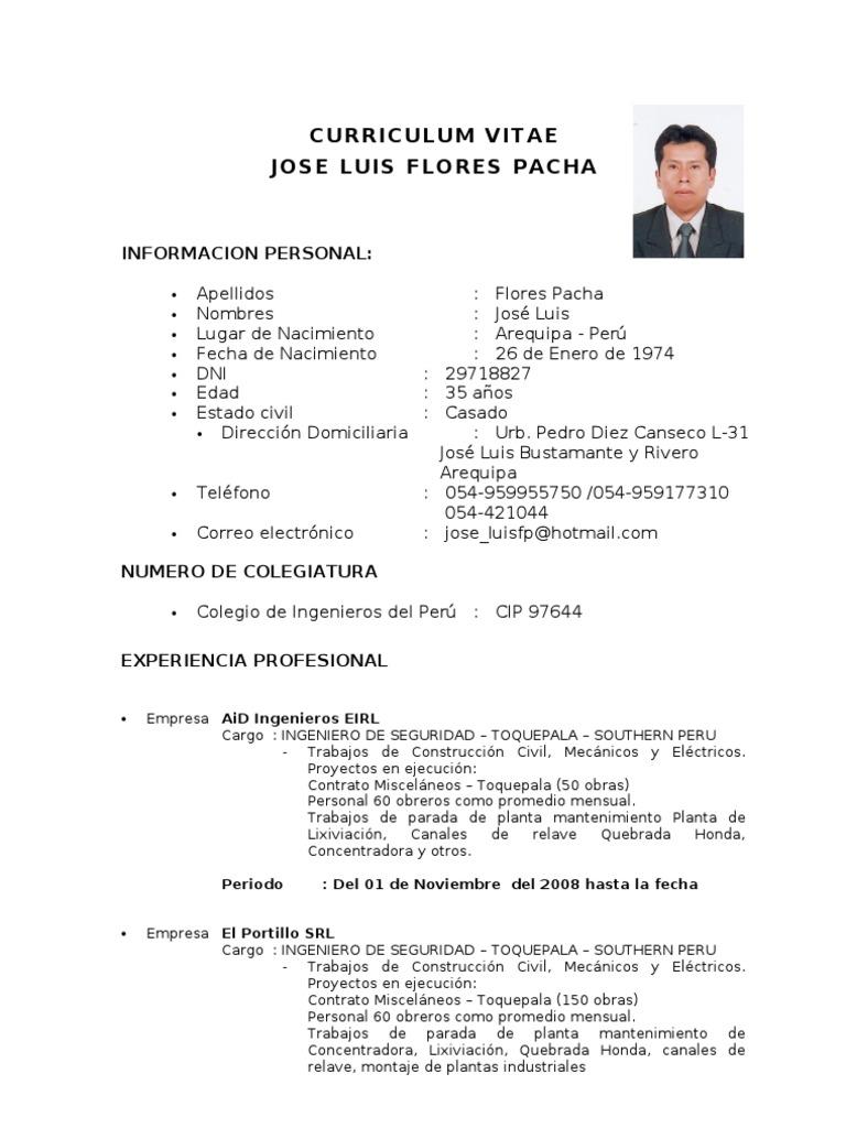 Modelo De Curriculum Vitae De Jefe De Almacen - Modelo De Curriculum ...