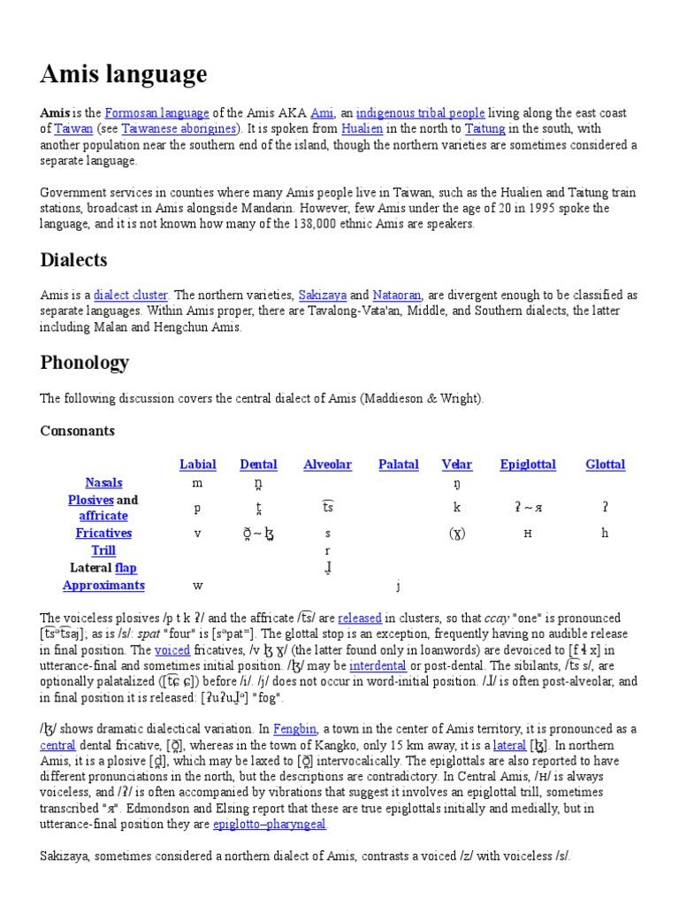 Amis Language Brief SummaryAmis Language Brief Summary