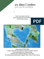 Luces en la Sombra Edicion Bilingue.pdf