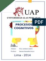 Procesos COGNITIVOS DESARROLLO
