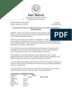 Lieutenant Governor Patrick Announces Senate Committee Assignments