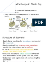 Bio Sem2 7.3 Stomata Slide Show
