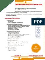 SISTEMAS DE GESTION ABMIENTAL ISO 14001, EMAS. IMPLANTACION.pdf