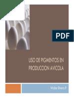 Uso de Pigmentos en Produccion Avicola