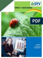 Brochure SyV Consultores y Asociados