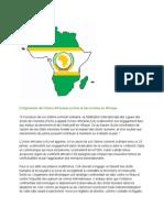 L'Impotence de l'Union Africaine Contre Le Terrorisme en Afrique