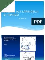 CURS 2 BFK Infectii ale laringelui - traheei +Bronsiolita.pptx