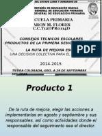 Esposicion Primera Sesion Productos Cte 2014-2015