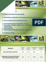 Informe de Gestion Cardique 2013
