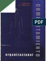 62676744-Comportamiento-Organizacional-10ma-Edicion-Don-Hellriegel-amp-John-W-Slocum.pdf