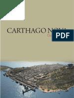 Guía didacti carthagonova.pdf