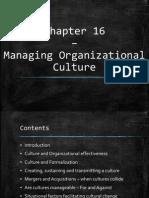OTOS - Organizational Culture