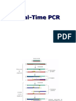 PCR Real Time