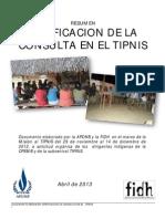 Resumen FIDH TIPNIS Final