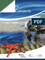 Monografia Mar Canario