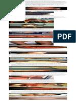 Vaccine Preventable Diseases.pdf