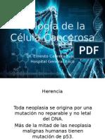 03 Genética y Biología de La Célula Cancerosa 2014