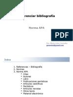 ReferenciaBidfffbliografica-Presentacion2