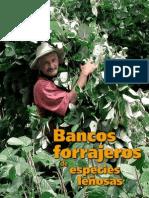 Banco Forrajero