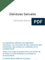 5. Glandulas Salivales
