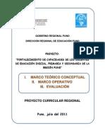 73752636-PCR-Resumen-2011-DRE-Puno-Peru.pdf