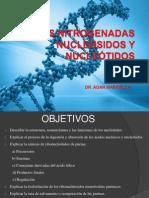 Bases Nitrogenadas. Nucleotidos de Purina