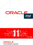 Oracle BD Options