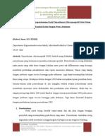 translate jurding pneumoperitoneum.docx