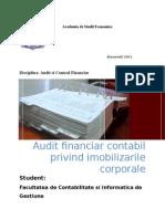 Auditul Financiar Al Imobilizarilor Corporale