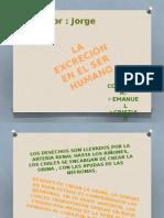 La Excrecion Humana