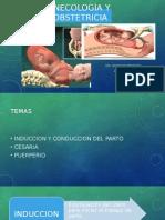 Ginecología y obstetricia alejandro silva.pptx