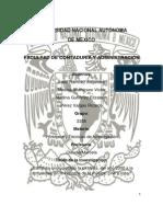 Pirateria Trabajo Completo PDF